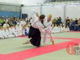 aikido_shagaet_po_moscow-2013-0012