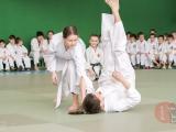 gfdp_aikido_reutov-2013-0038