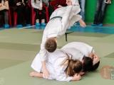 gfdp_aikido_reutov-2013-0039