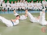 gfdp_aikido_reutov-2013-0050