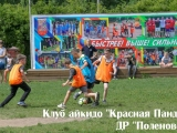 polenovo_2017.08.08_07_result