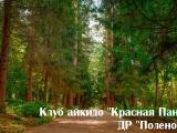 polenovo_2017.08.09_08_result