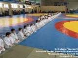 LS2019-03-16-2-1_result_seminar_aikido_reutov