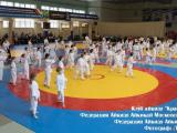 LS2019-03-16-2-3_result_seminar_aikido_reutov