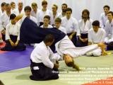 024_seminar_aikido_reutov