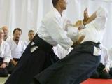 037_seminar_aikido_reutov