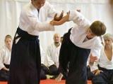 045_seminar_aikido_reutov
